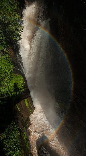 A vertical rainbow - with the shadow of the photographer.© 2013 Bob Harvey