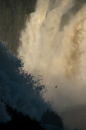Falls on two sides of the Devil's Throat - find the bird, for perspective!© 2013 Bob Harvey