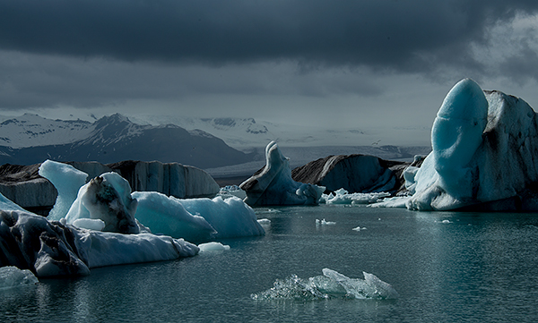 Lagoon filled with icebergs©2013 Bob Harvey
