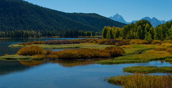 Oxbow Bend, afternoon light© 2013 Diane Kelsay