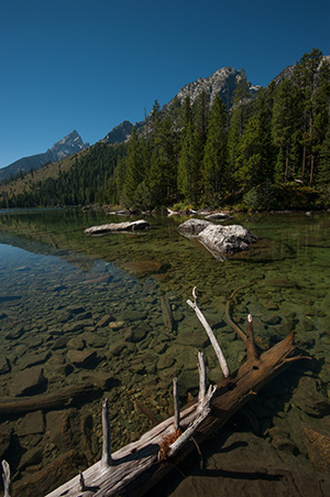 String Lake© 2013 Bob Harvey