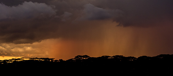Downpour at sunset © 2015 Diane Kelsay