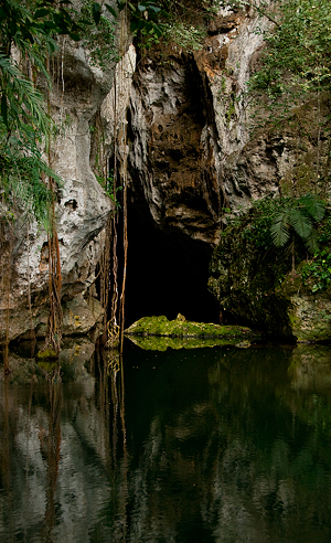 Barton Creek Cave entrance © 2010 Diane Kelsay