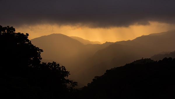 Sunset in the cloud forest © 2015 Diane Kelsay