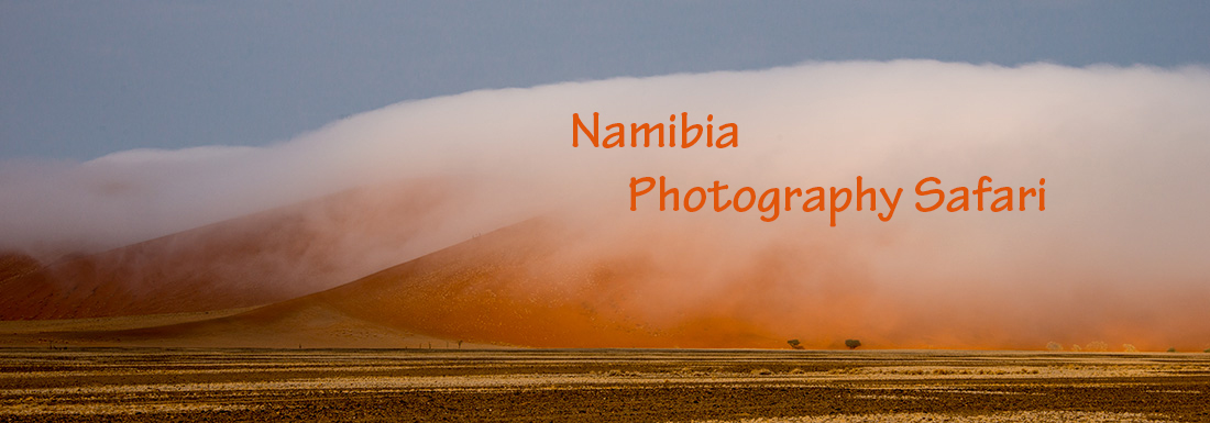 Namibia Photography Safari with Nature Photography Adventures